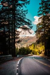 Yosemite Canyon - Road