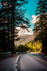 Yosemite Canyon - Road