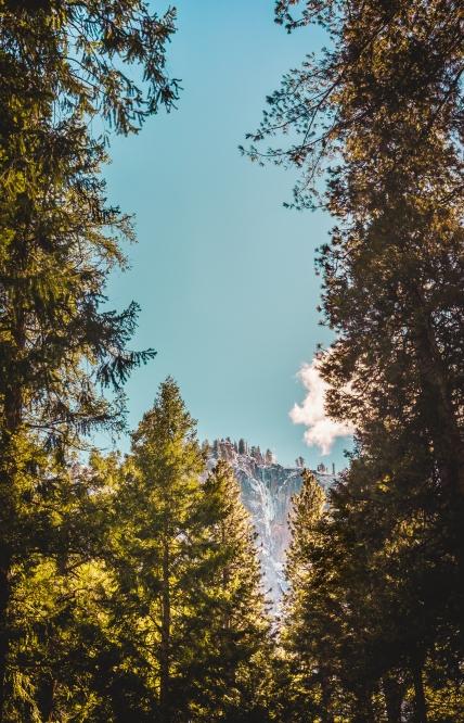 Yosemite Canyon Wood Peak