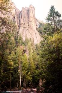 Yosemite Canyon -wood