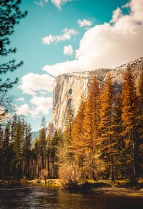 Yosemite - ICON2
