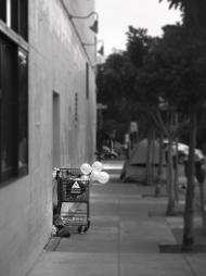 Everyone has a dream! San Francisco, 2016